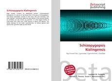 Borítókép a  Schizopygopsis Kialingensis - hoz