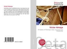 Portada del libro de Victor Amaya