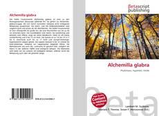 Bookcover of Alchemilla glabra