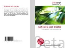 Bookcover of Alchemilla sect. Erectae