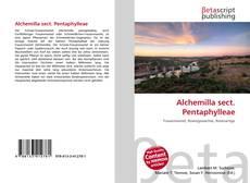 Buchcover von Alchemilla sect. Pentaphylleae