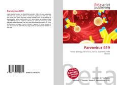 Bookcover of Parvovirus B19