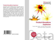 Bookcover of Thiokol-Woodbine Explosion