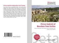 Capa do livro de Prince Gabriel of Bourbon-Two Sicilies