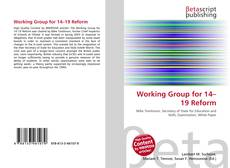 Bookcover of Working Group for 14–19 Reform