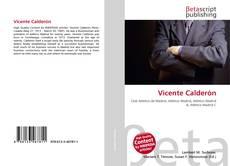Portada del libro de Vicente Calderón