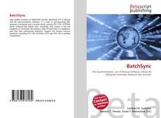 BatchSync kitap kapağı