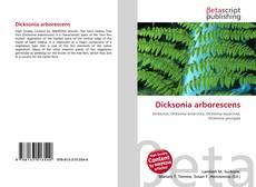 Bookcover of Dicksonia arborescens