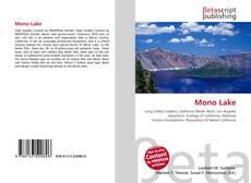 Copertina di Mono Lake