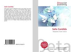 Bookcover of Salix Candida