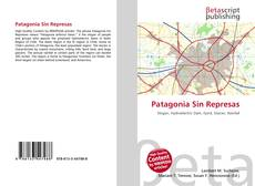 Bookcover of Patagonia Sin Represas