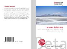 Bookcover of Larnaca Salt Lake