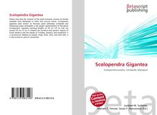 Обложка Scolopendra Gigantea