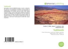 Subfossile的封面