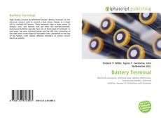 Bookcover of Battery Terminal