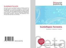 Bookcover of Scotiellopsis Terrestris