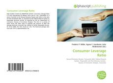 Bookcover of Consumer Leverage Ratio