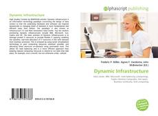 Dynamic Infrastructure的封面