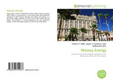 Capa do livro de Massey Energy