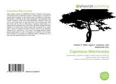 Capa do livro de Cupressus Macrocarpa