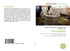Bookcover of Terra Sigillata