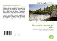 Bookcover of Kannagawa Hydropower Plant