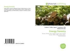 Borítókép a  Energy Forestry - hoz