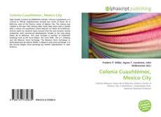 Colonia Cuauhtémoc, Mexico City kitap kapağı