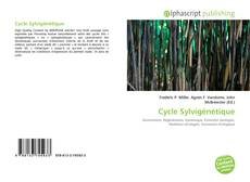Bookcover of Cycle Sylvigénétique