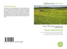 Bookcover of Flavia Caesariensis