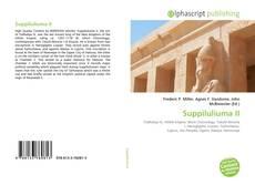 Suppiluliuma II的封面