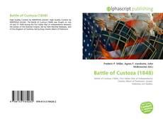 Bookcover of Battle of Custoza (1848)