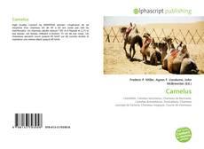 Camelus的封面