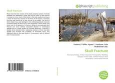 Bookcover of Skull Fracture