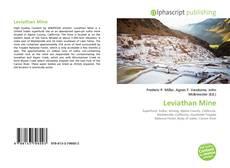 Leviathan Mine的封面