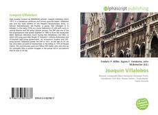 Bookcover of Joaquín Villalobos