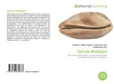 Buchcover von Spicule (Biologie)