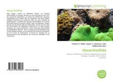 Bookcover of Hexactinellida