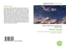 Capa do livro de Depth Gauge