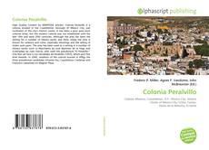 Capa do livro de Colonia Peralvillo