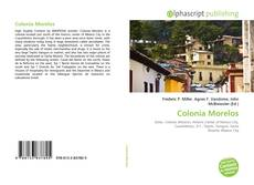Portada del libro de Colonia Morelos