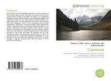 Capa do livro de Cupressus