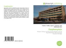 Bookcover of Fosphenytoin
