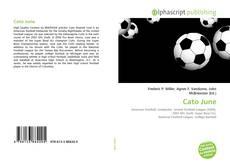 Capa do livro de Cato June
