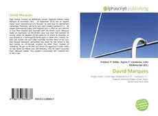 Bookcover of David Marques
