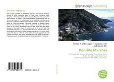 Borítókép a  Pontine Marshes - hoz