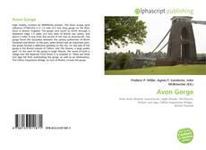 Bookcover of Avon Gorge