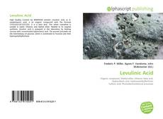 Bookcover of Levulinic Acid