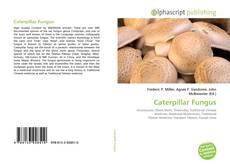 Caterpillar Fungus kitap kapağı