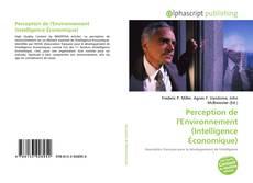 Couverture de Perception de l'Environnement (Intelligence Économique)